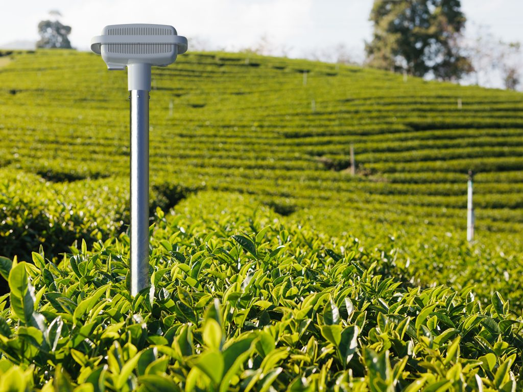 chelles-e-hayashi-design-portfolio-neofield-agriculture-monitoring-probe-sustainability-product-optimization-language-field